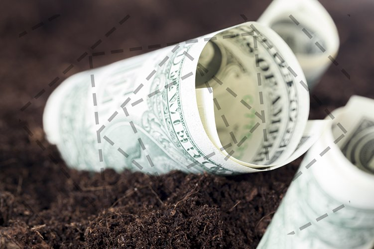 one-dollar cash example image 1