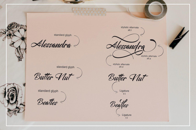Alessandra example image 4