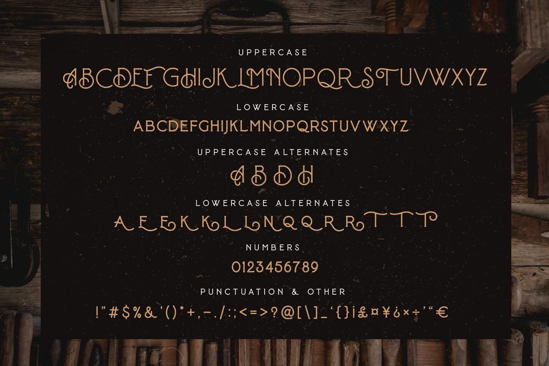 Baroneys - Vintage Typeface example image 11