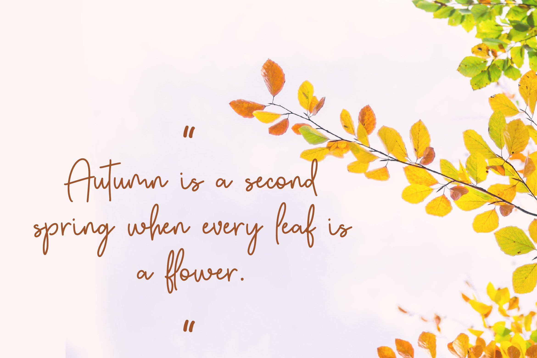Autumn Fairy Signature Monoline Font example image 10
