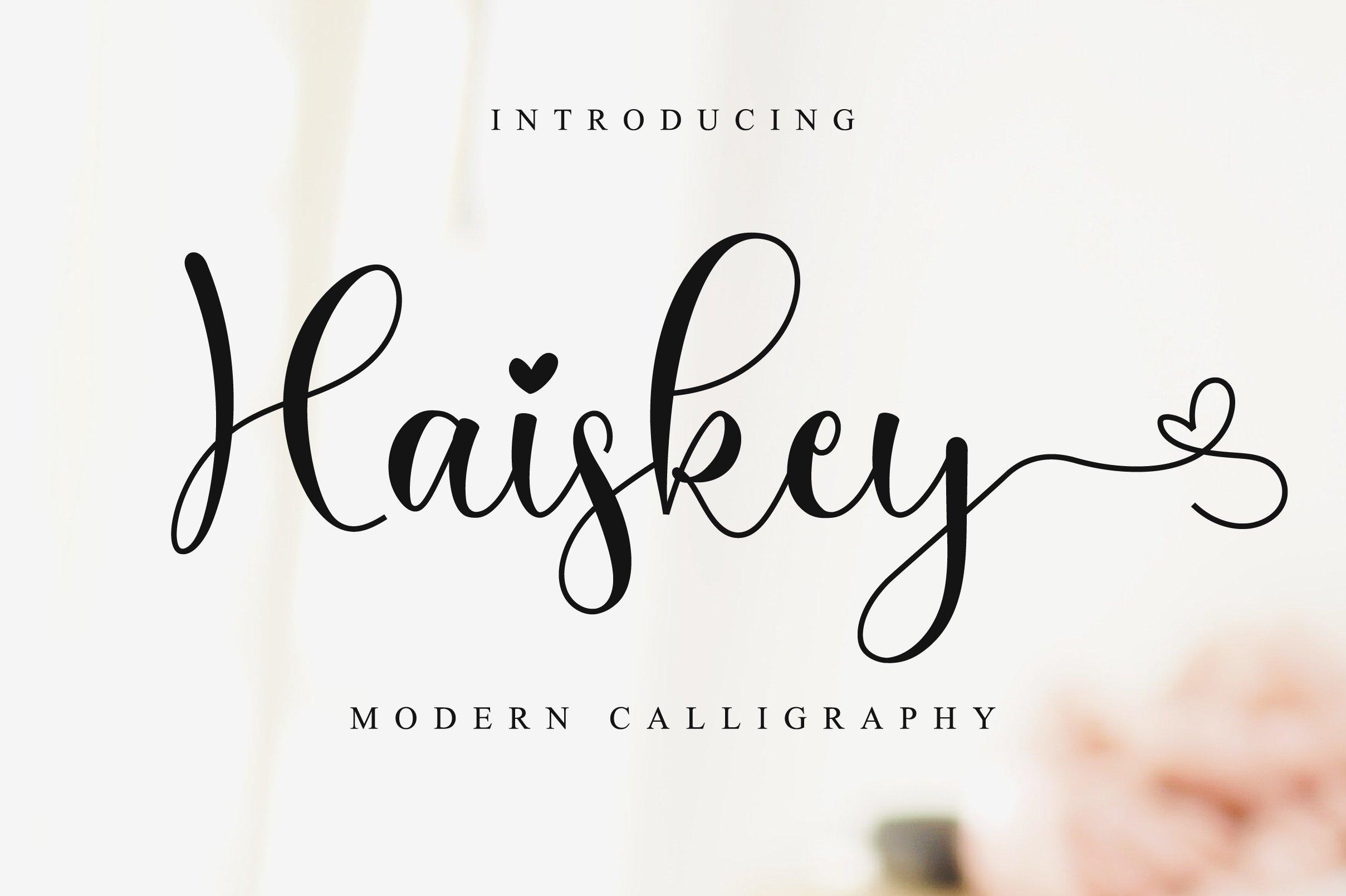 Haiskey - Lovely Script Font example image 1