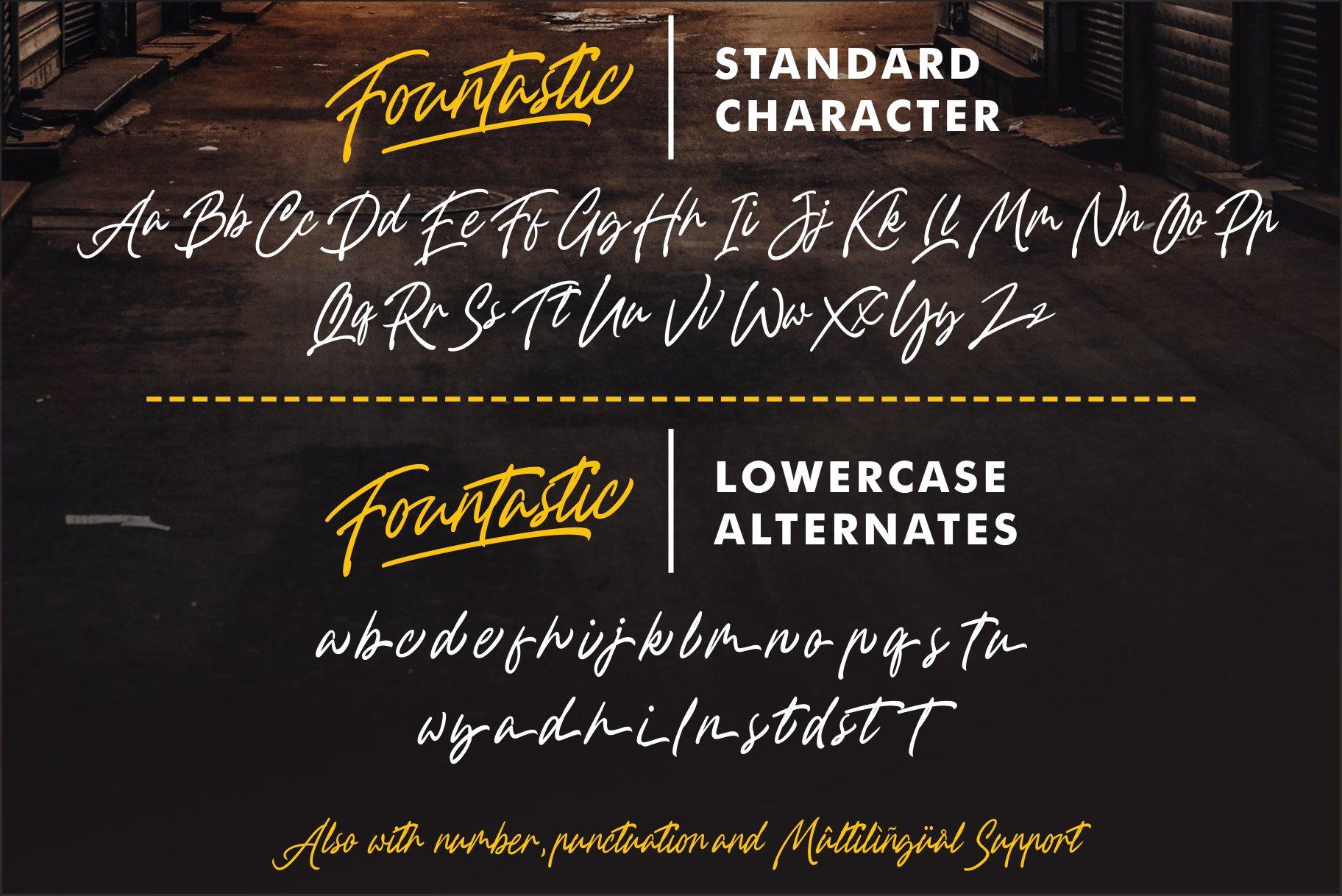 Fountastic Script Typeface example image 10