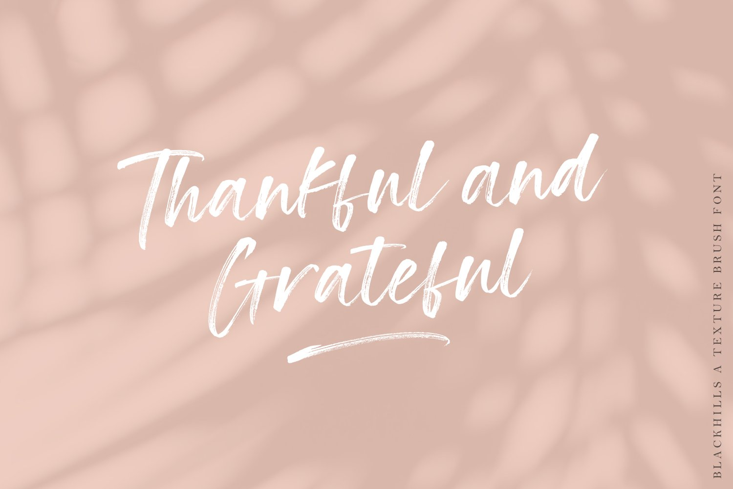 Blackhills - Brush Fonts example image 12
