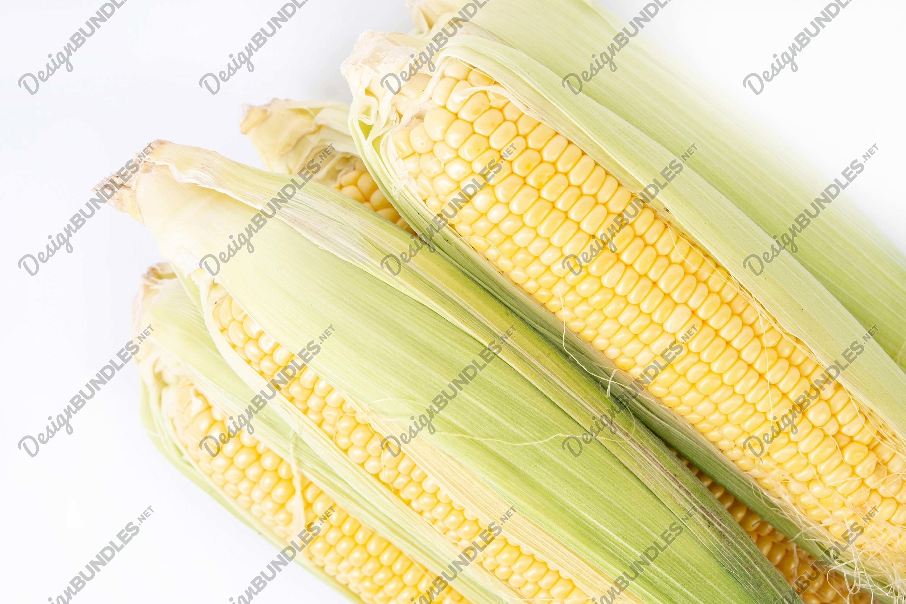 Stock Photo - High Angle View Of Corn example image 1