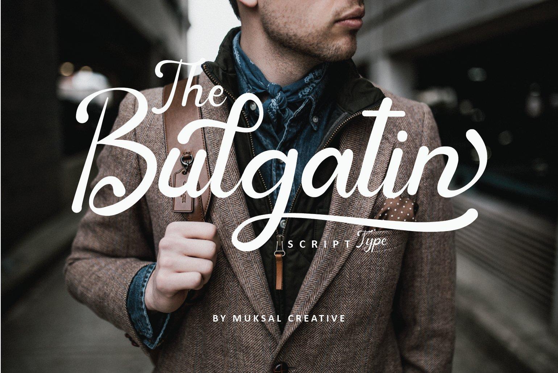 Bulgatin example image 1