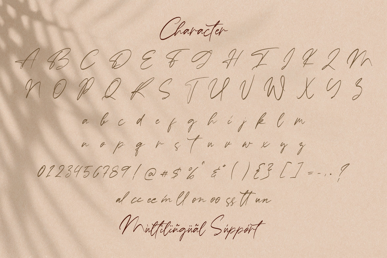Ballerina - Signature Script Font example image 14