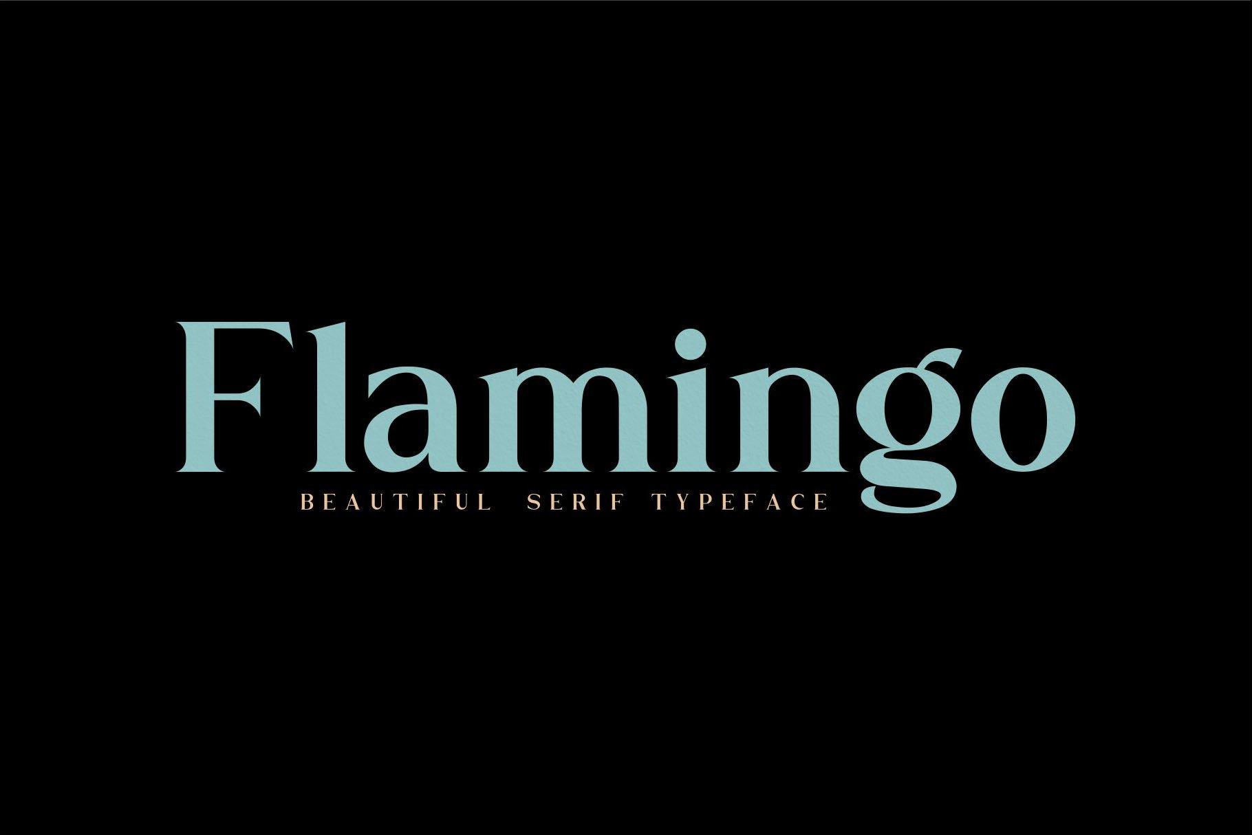 Flamingo example image 12