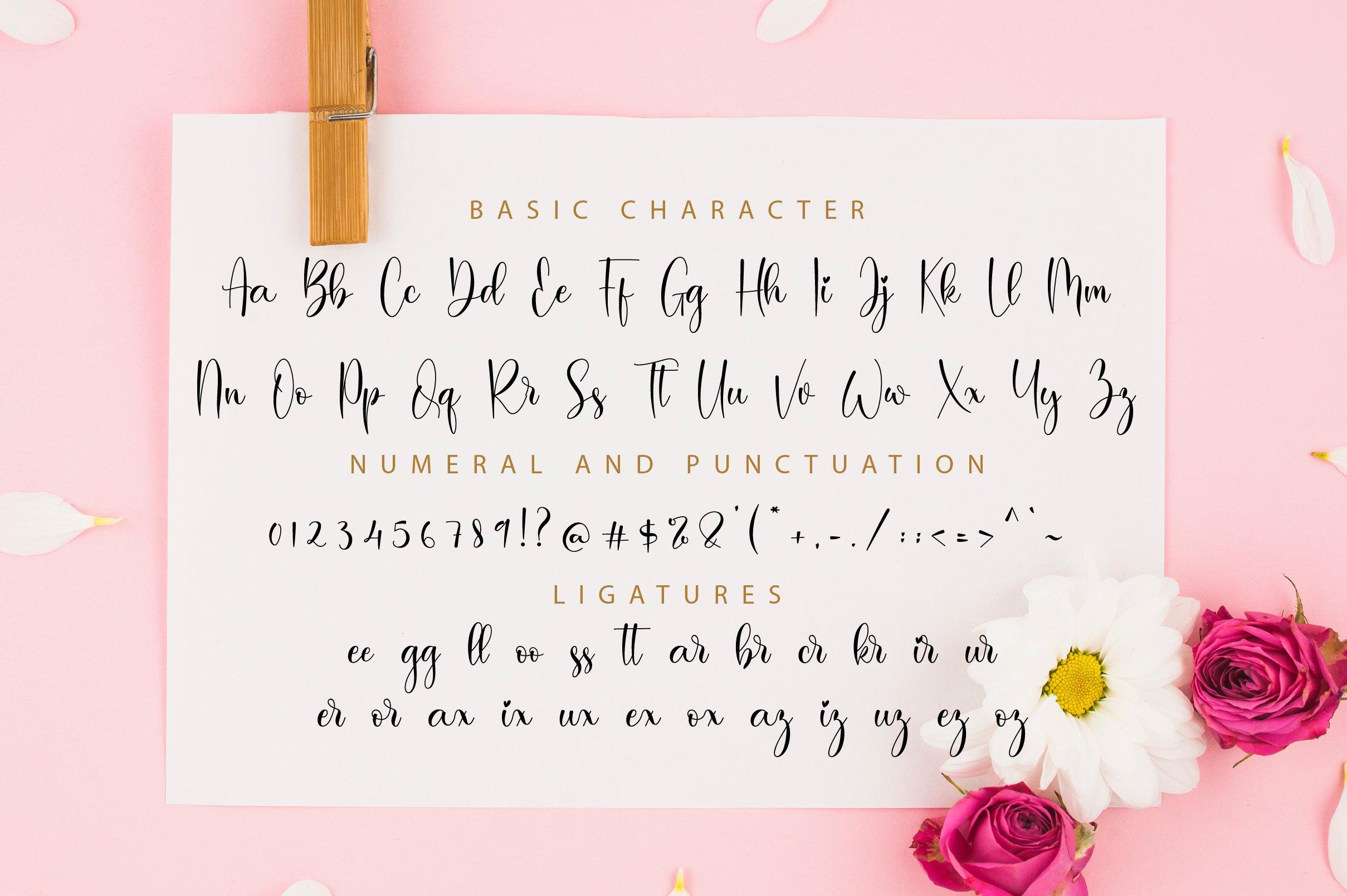 Baiskey Script example image 11