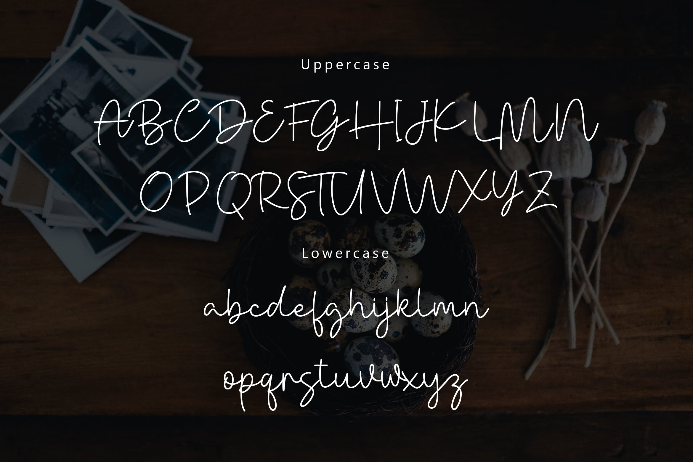 Danielle Signature - Handwritten Font example image 5