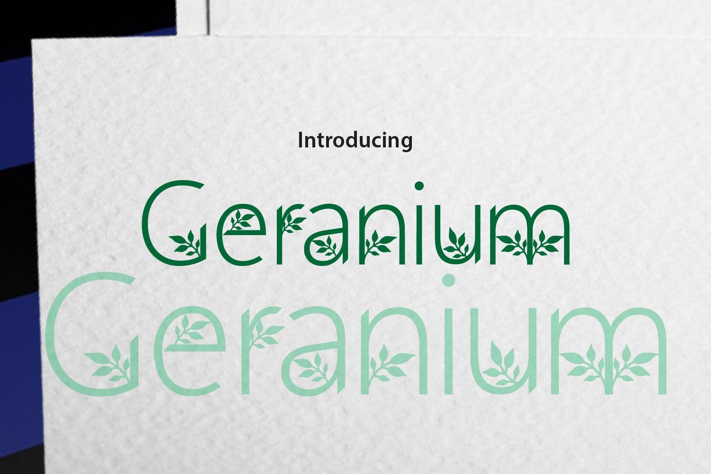 Geranium example image 1