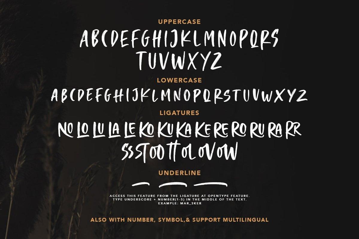 Crooked Hooks - Dry Brush Font example image 2