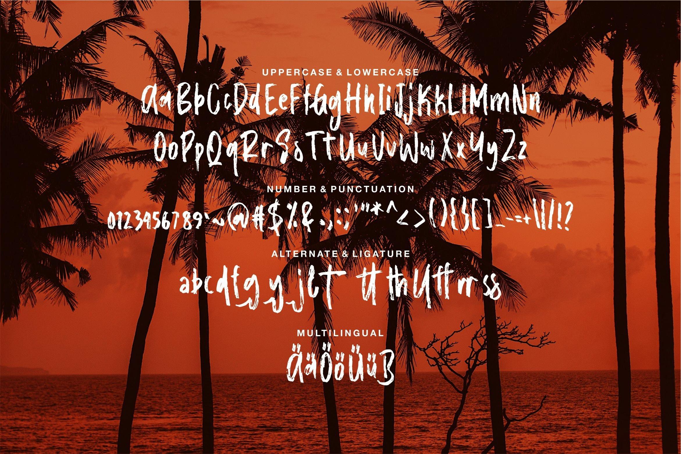 Callisto - A New Brush Font example image 6