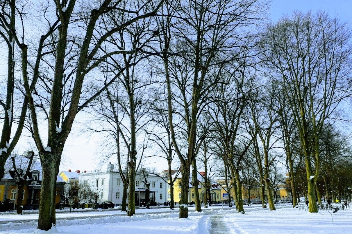 Winter photos Snow in the City Norrköping Sweden example image 1