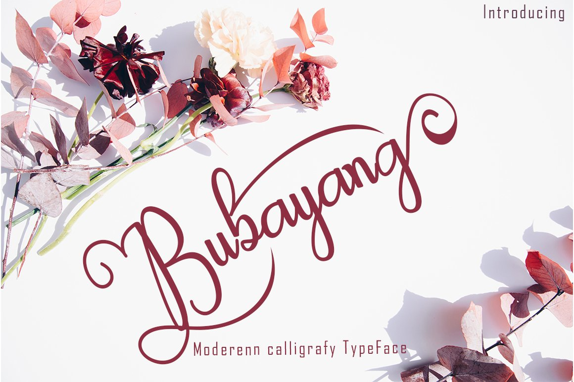 SPECIAL FONT BUNDLE COLLECTION example image 12