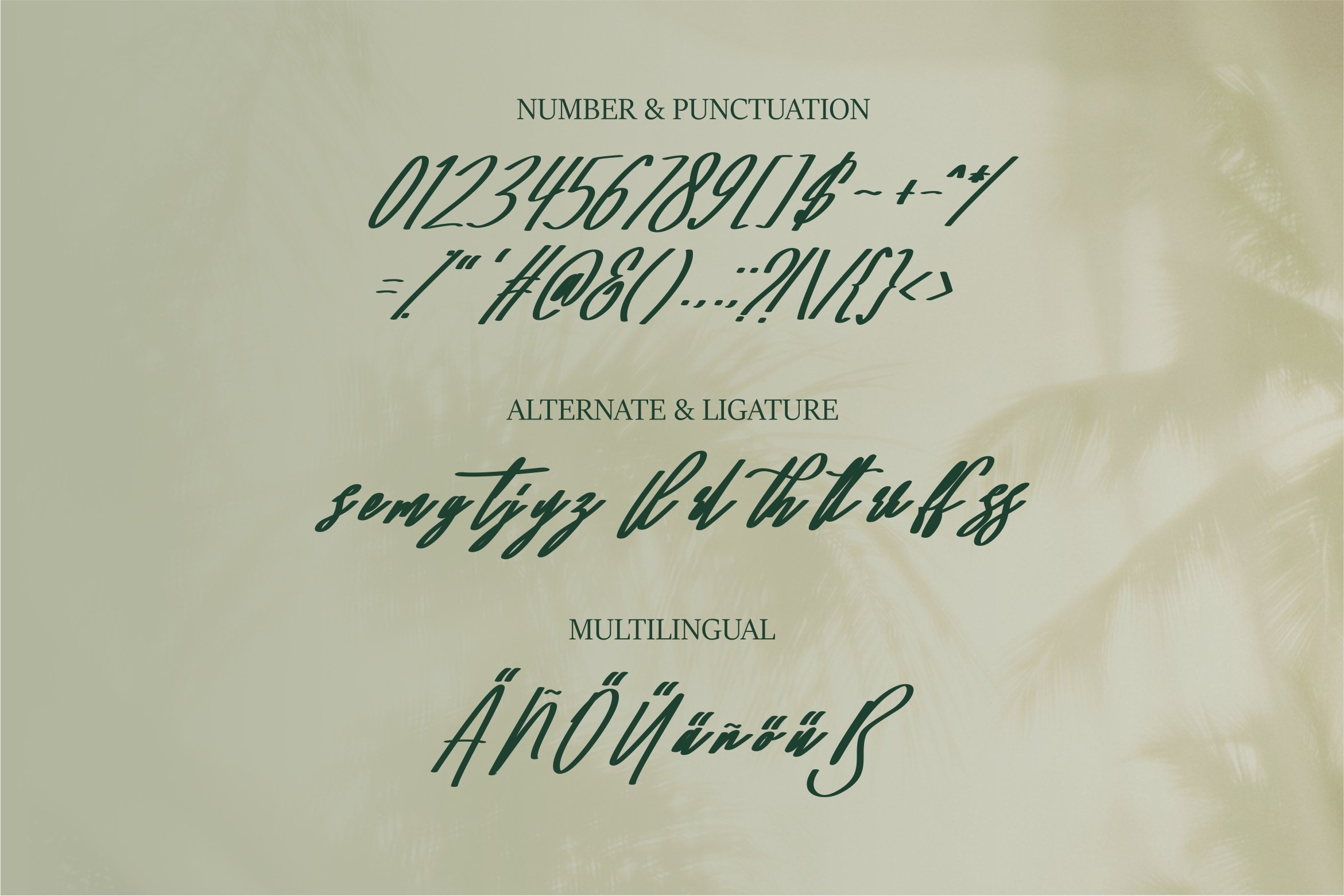Mallimal - A Bold Signature Font example image 5