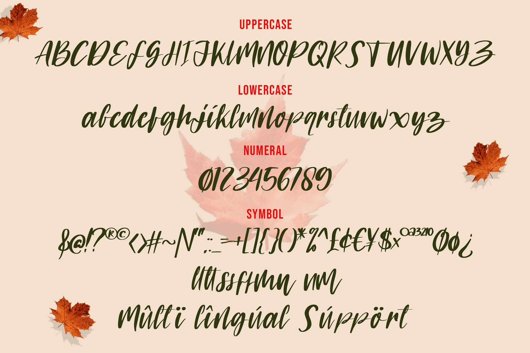 Marlyne Script Font example image 2