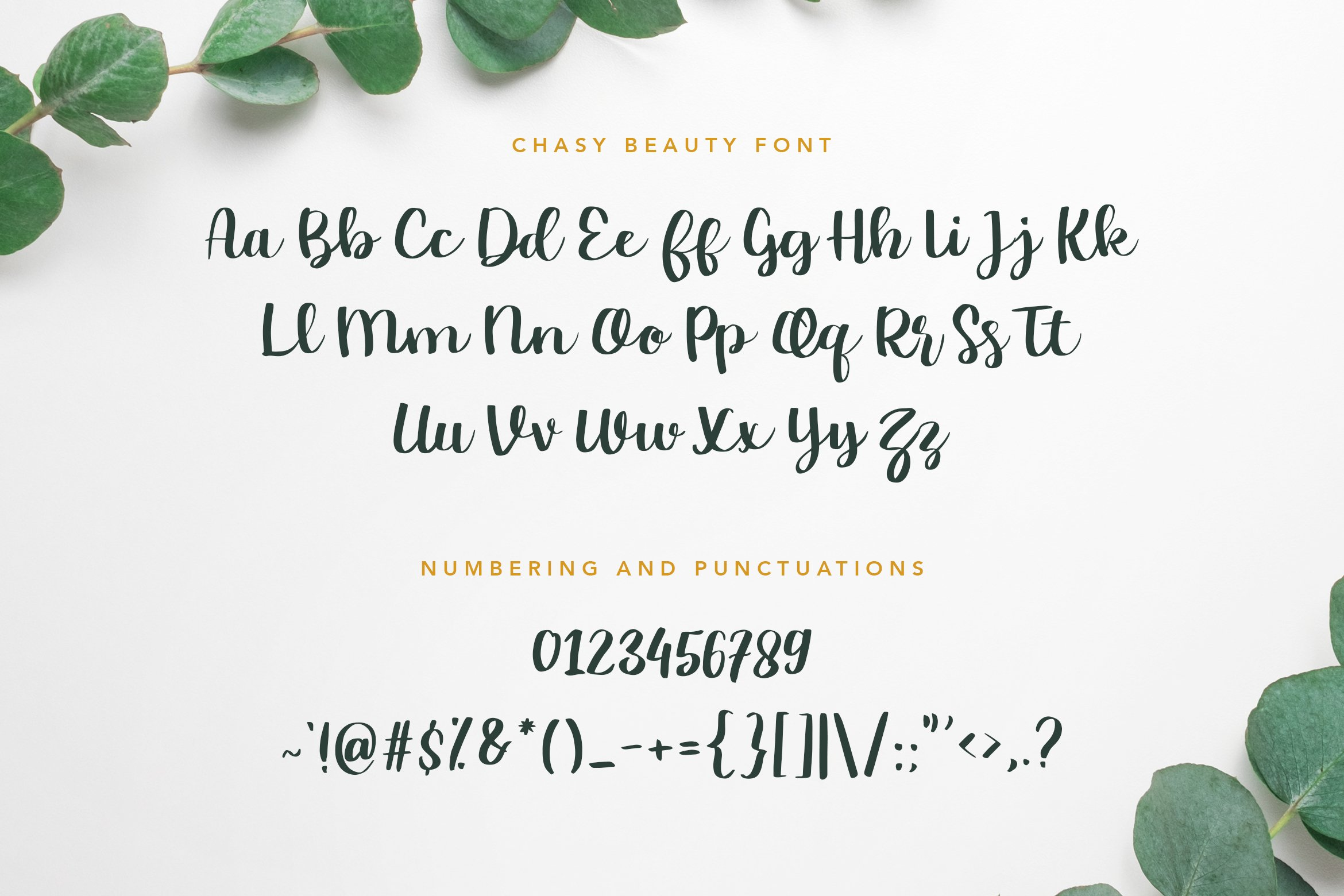 Chasy Beauty Font example image 9