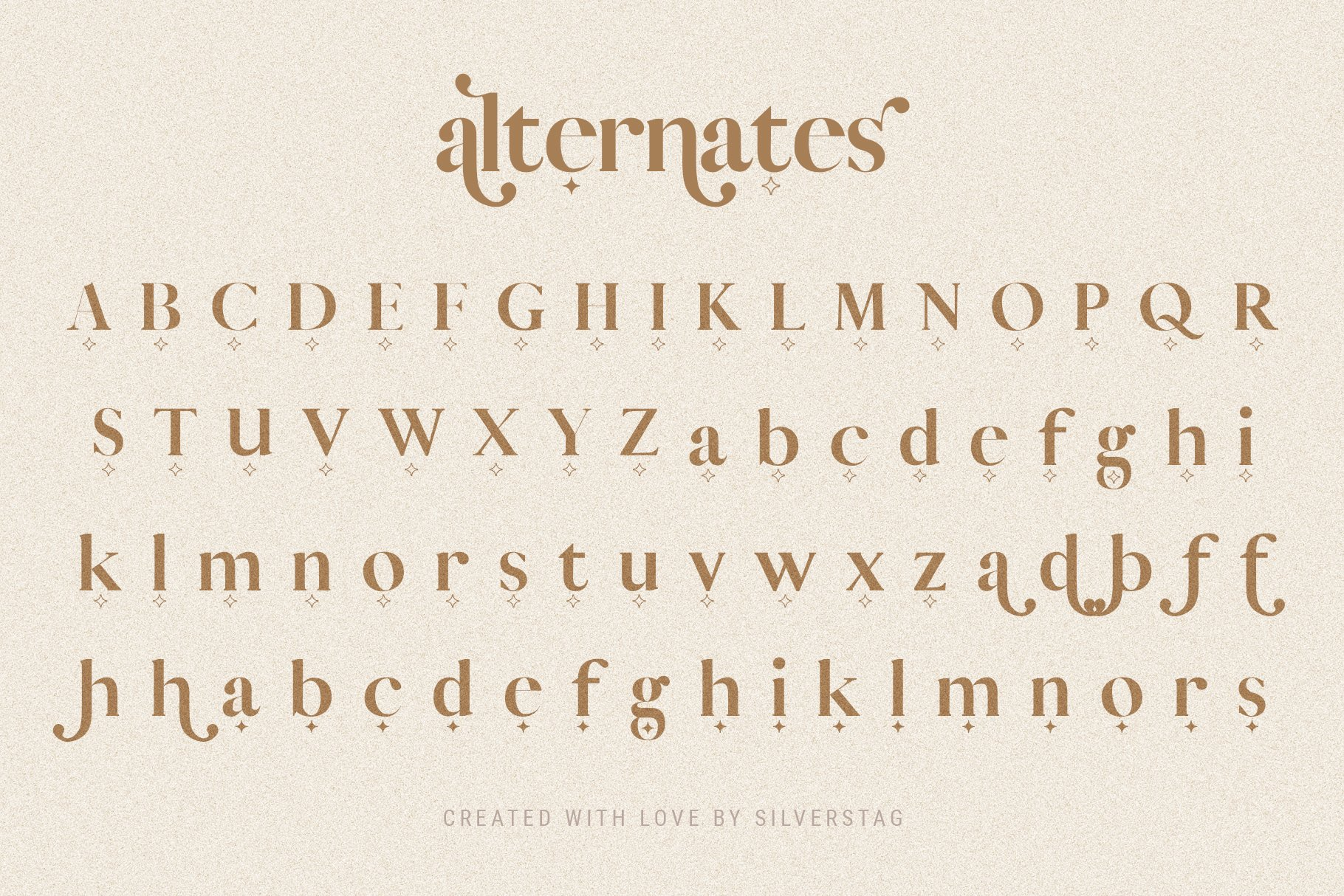 Vicky Christina - Chic & Stylish Ligature Serif Font example image 13