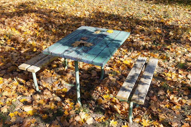 Autumn bench table park example image 1