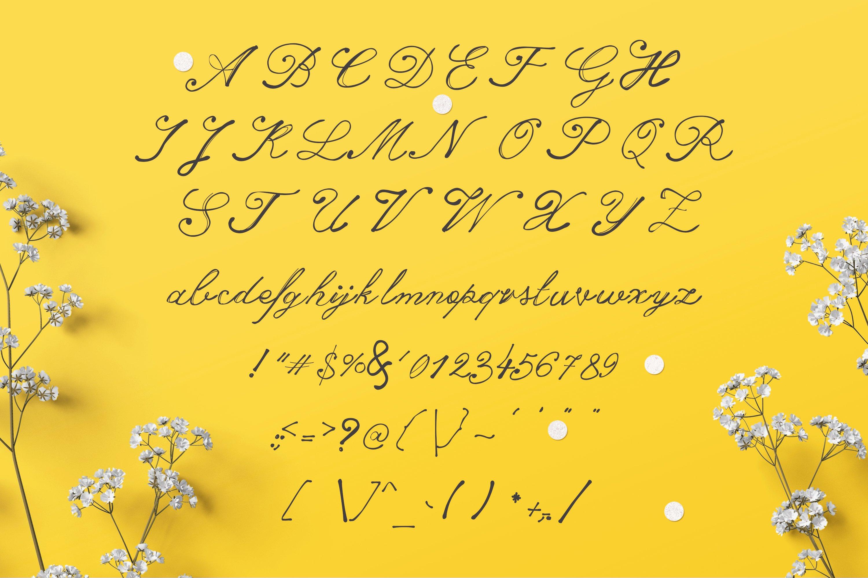 14 Fonts bundle vol.3 example image 17