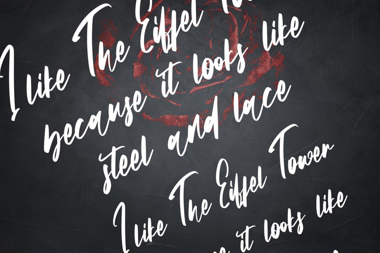 Stainless - Handwritten Script Font example image 4