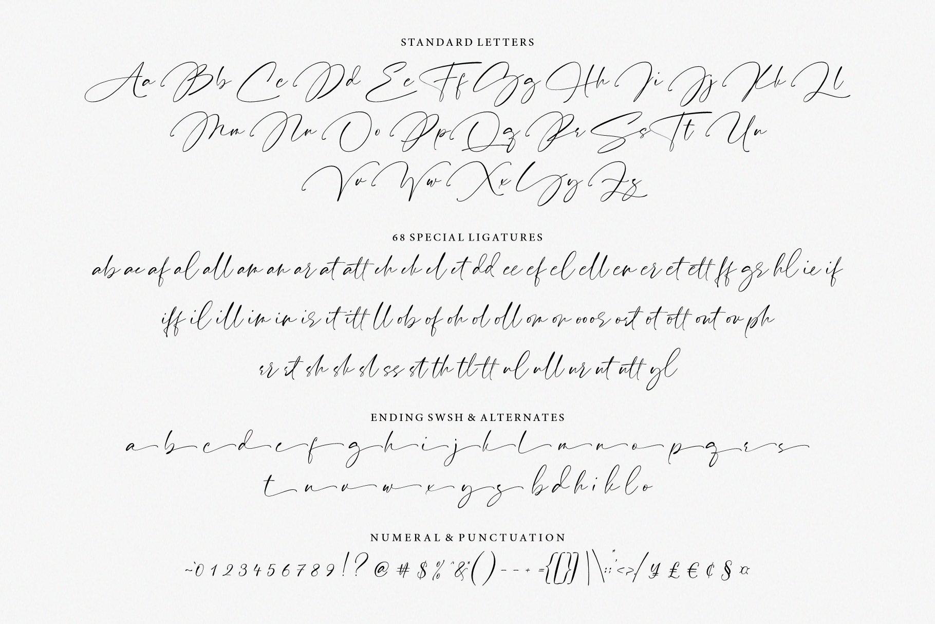 Pardone   Luxury Signature Font example image 14