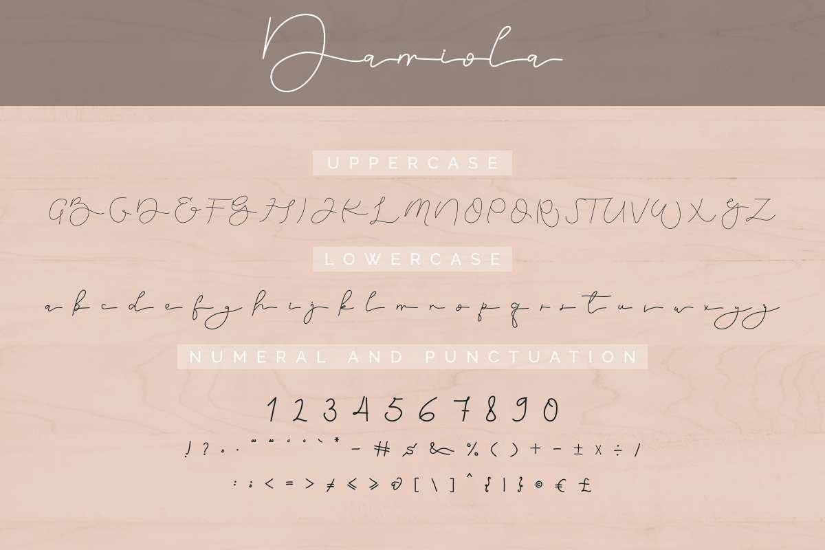 Damiola example image 5