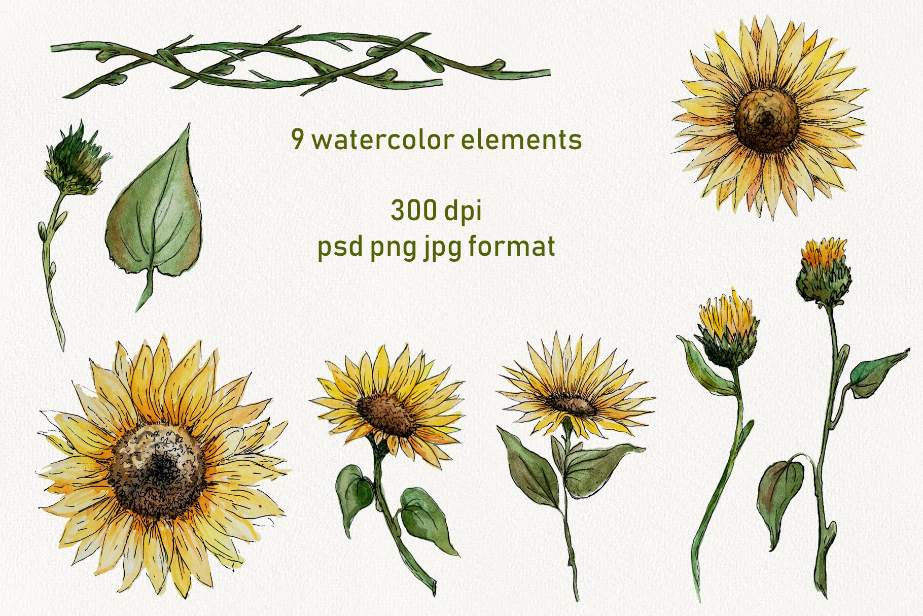Watercolor Sunflower Clipart Collection example image 6