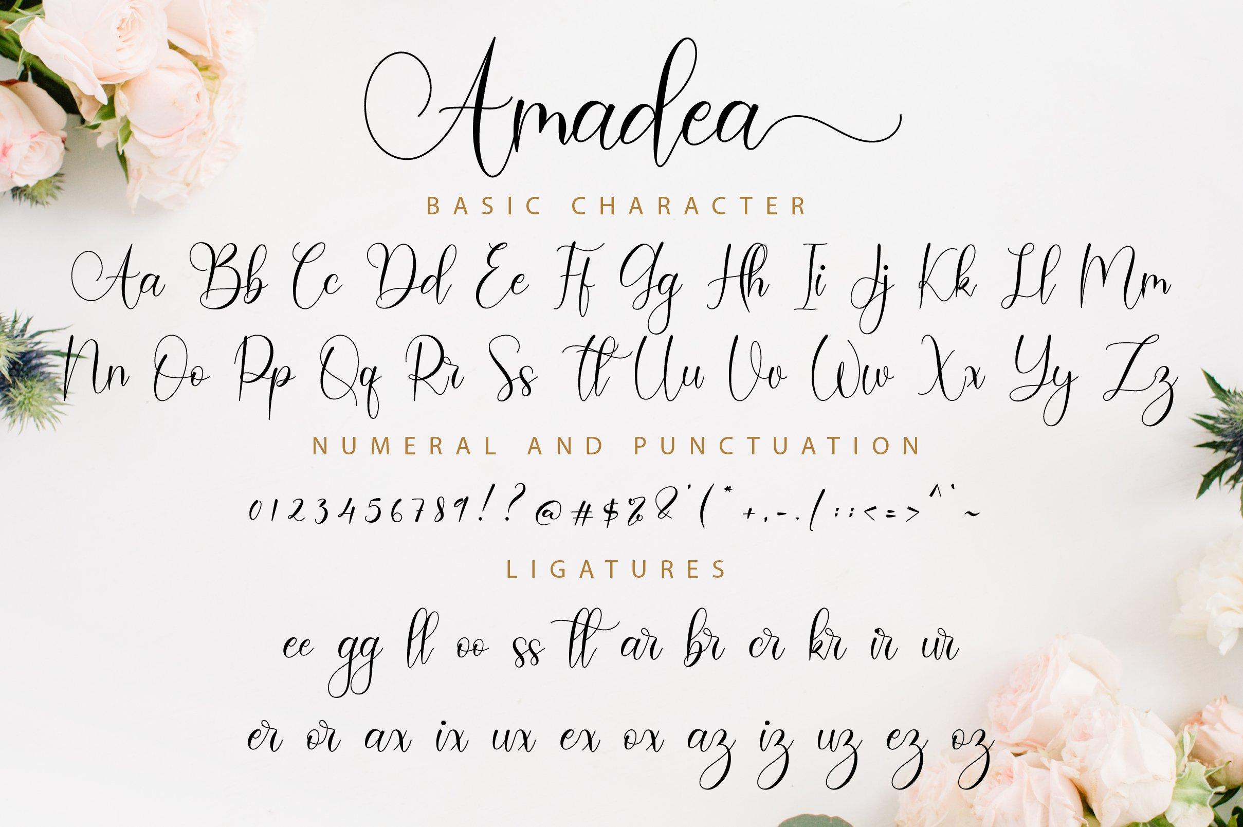 Amadea Script example image 11