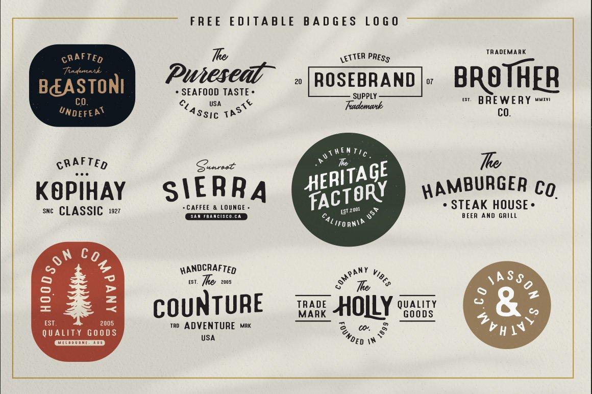 Holluise Vintage Extra Badges Logo example image 4
