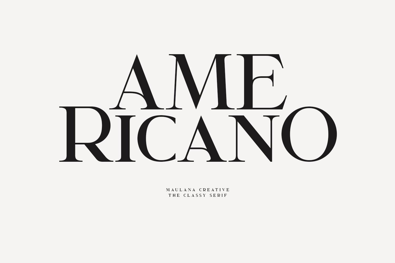 Garcedo Display Serif Font example image 4