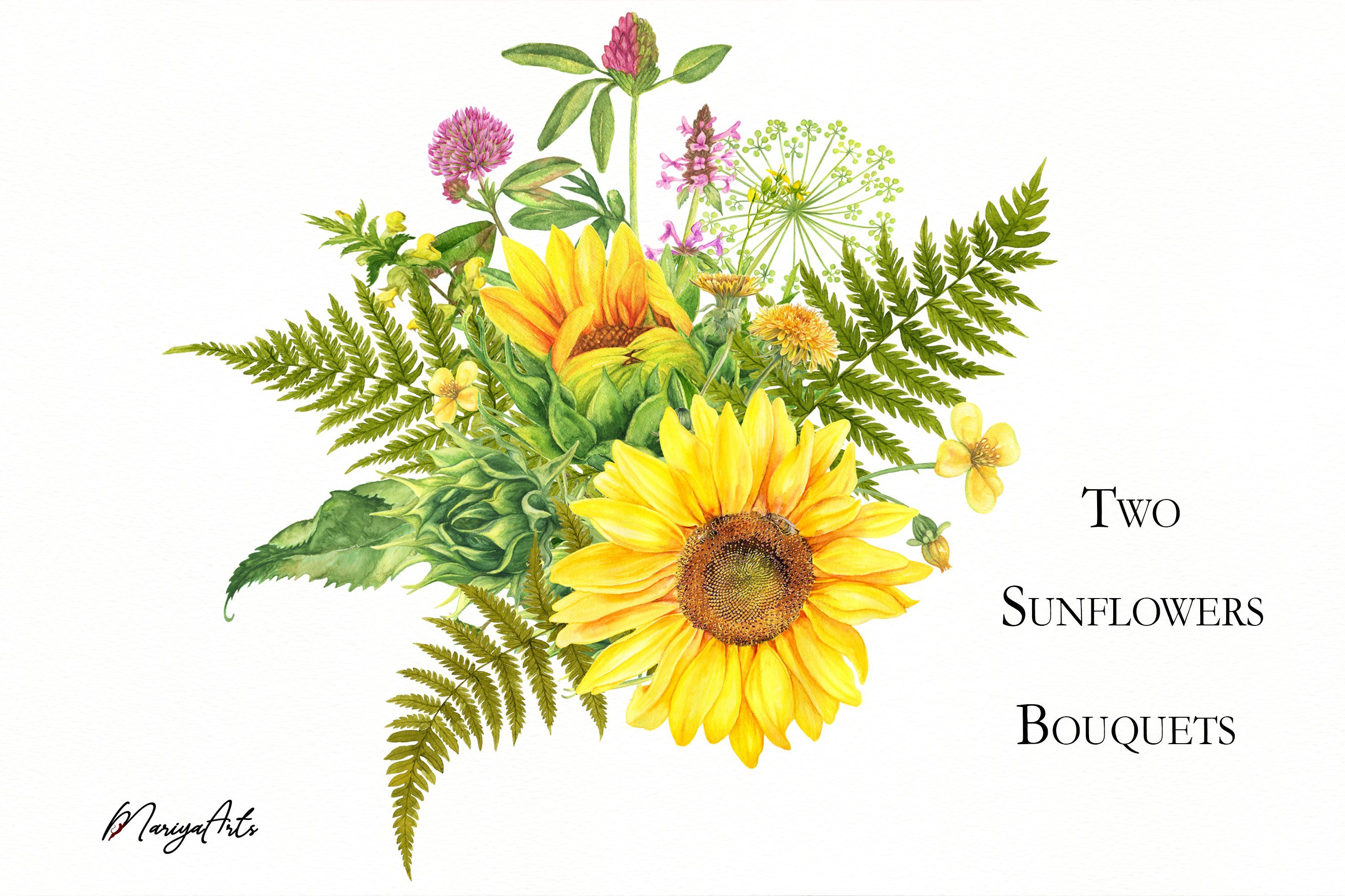 Two Sunflowers Bouquets, Meadow Flowers, Clipart ...