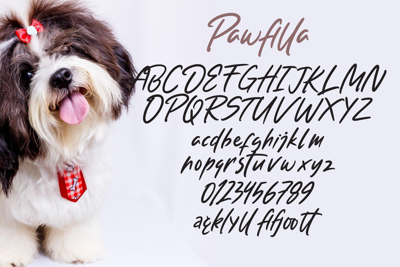 Pawfilla - Brush Font example image 5