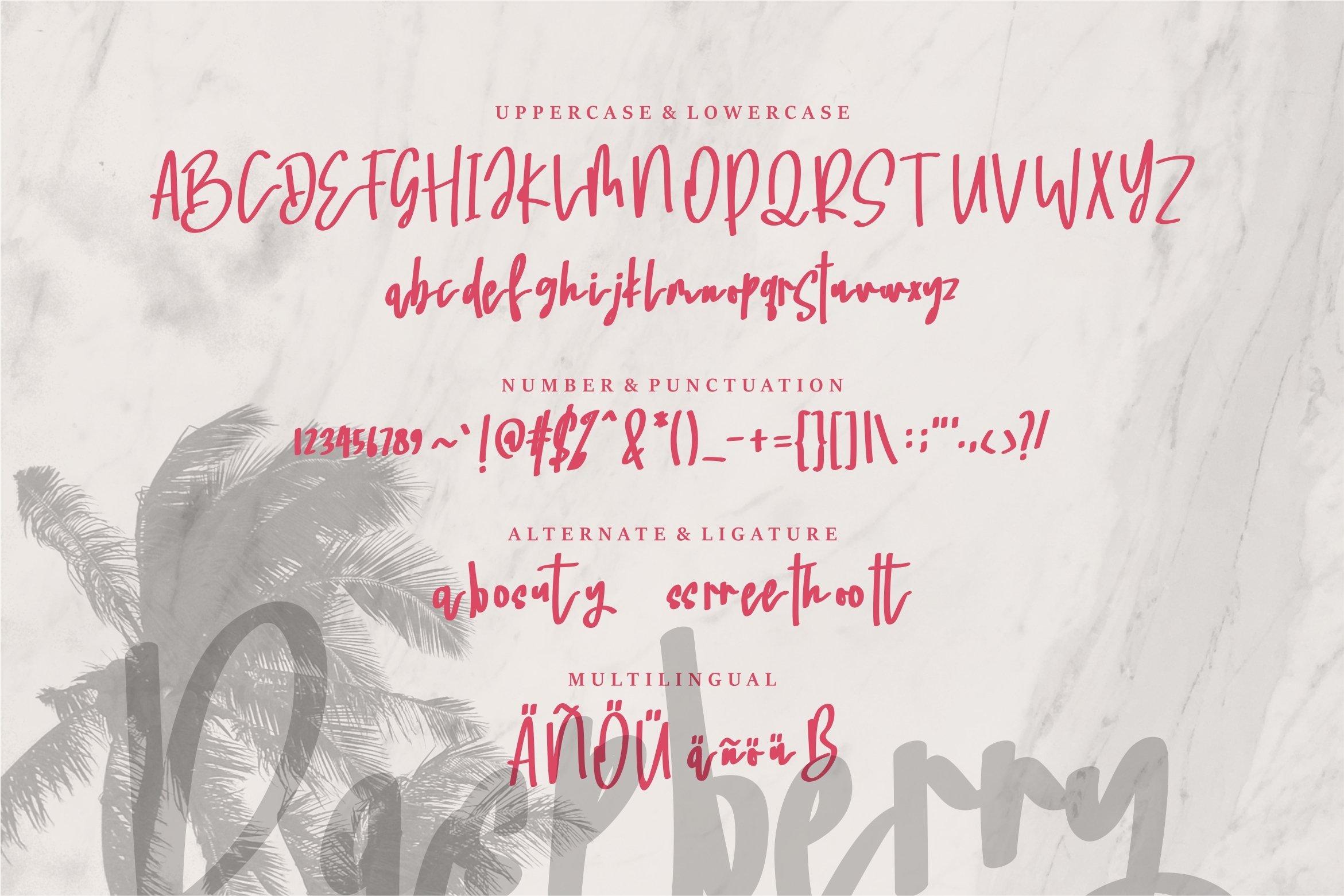 Raspberry - A Beauty Handwritten Font example image 6