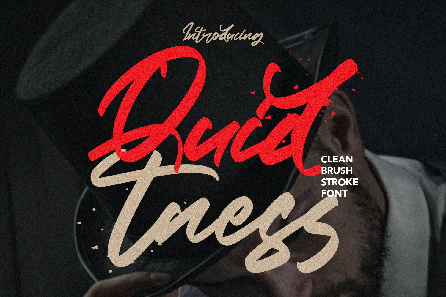 Quidtness - Clean Brush Stroke Font example image 1
