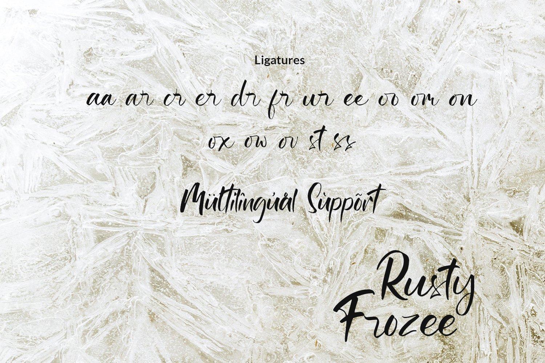 Rusty Frozee example image 8