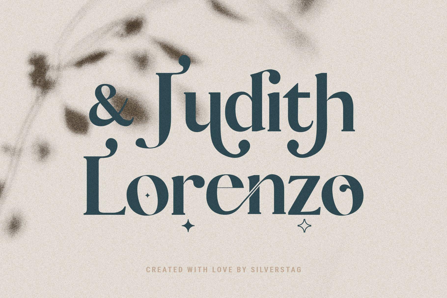 Vicky Christina - Chic & Stylish Ligature Serif Font example image 19