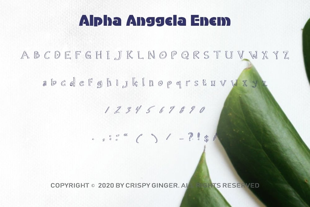 Alpha Anggela - 18 Font styles and 150 Swashes example image 9