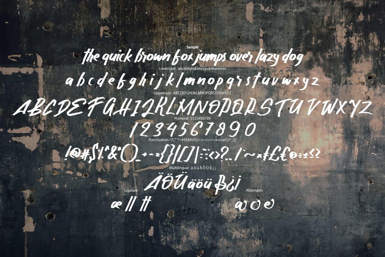 Gasela | Grungetype Font example image 6