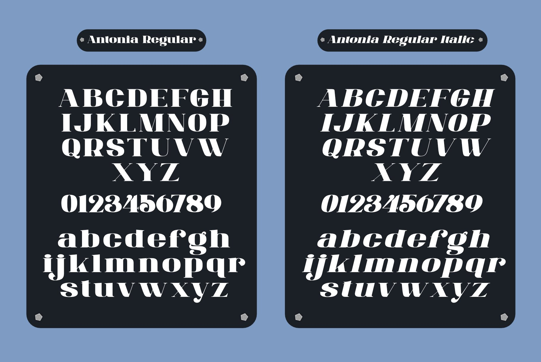 ANTONIA - The Classino Serif example image 9