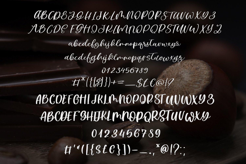Sweet Hazelnut Font Duo example image 5