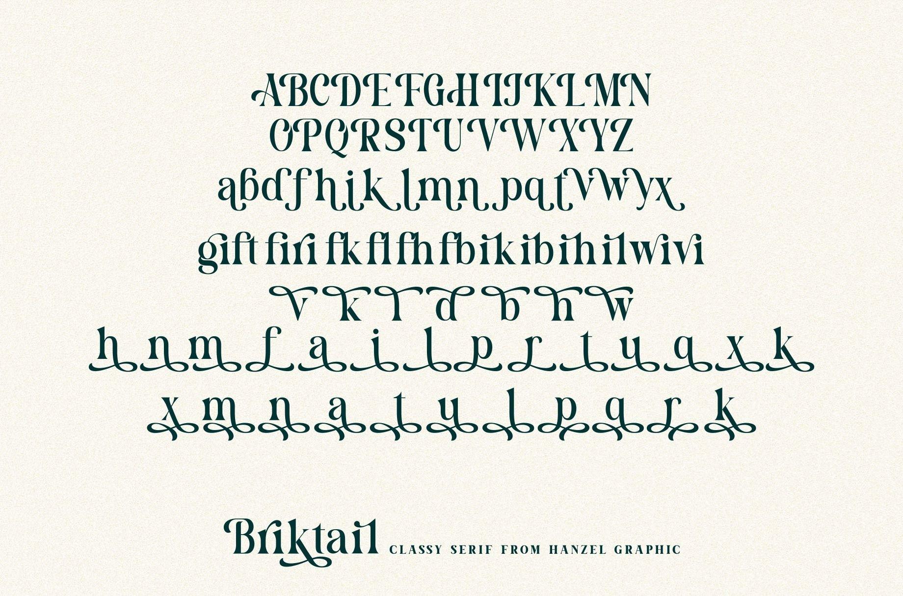 Briktail//Modern Serif Font example image 9