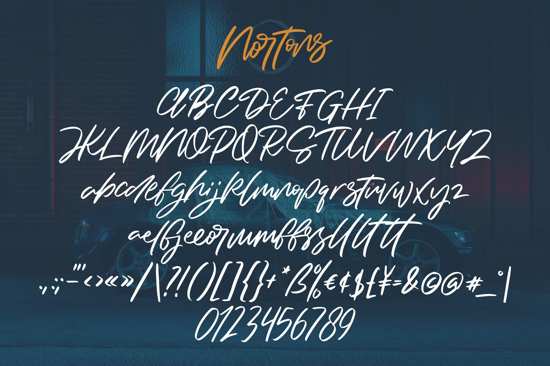 Nortons - Handrawn Brush Script Font example image 6