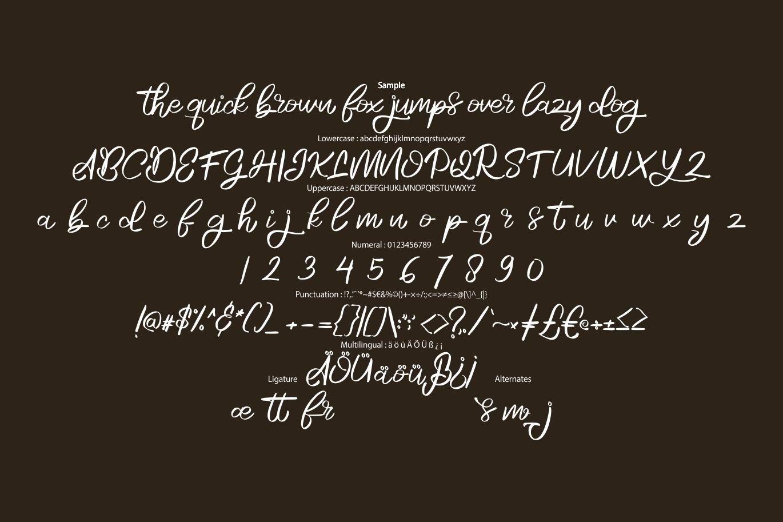 Rosela   Beauty Natural Script Font example image 6