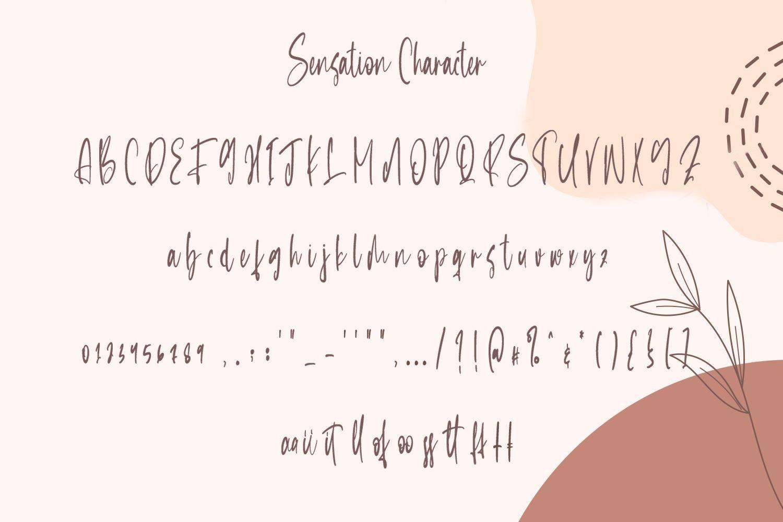 Sensation - Beautiful Calligraphy Font example image 4