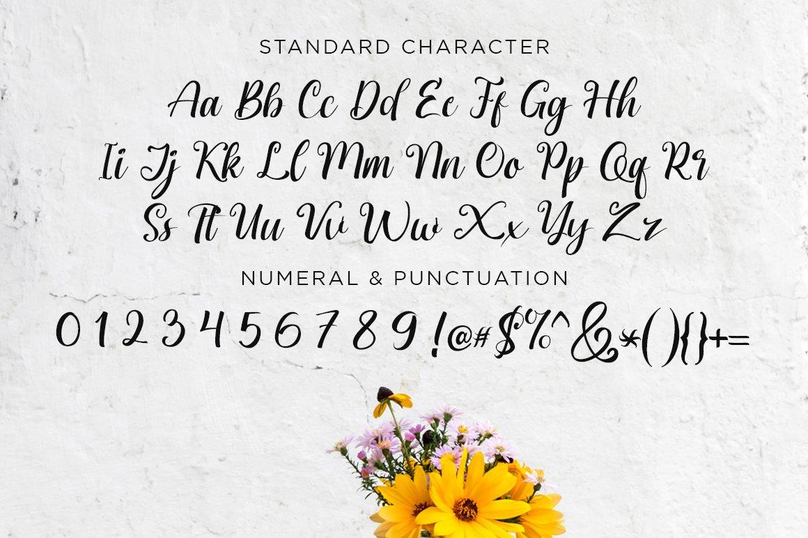 Brigitta Script example image 8