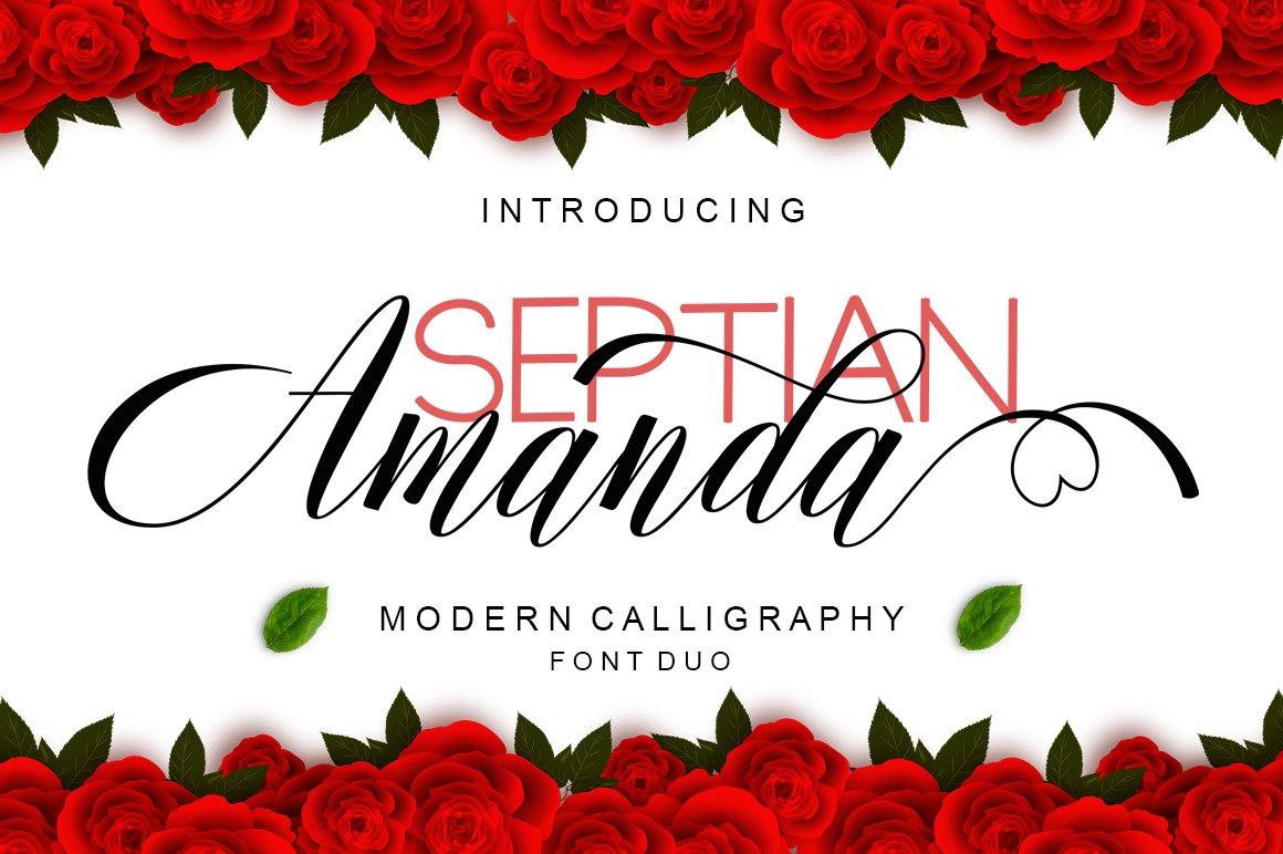 Amanda Script Font Duo example image 1