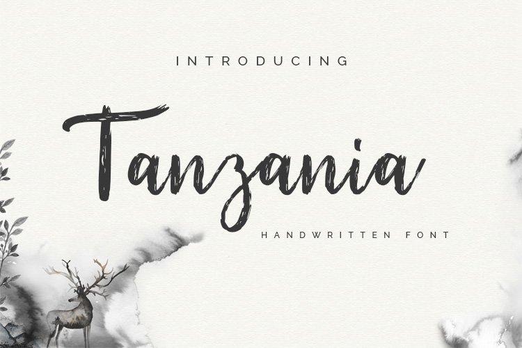 Tanzania Script Font example image 1