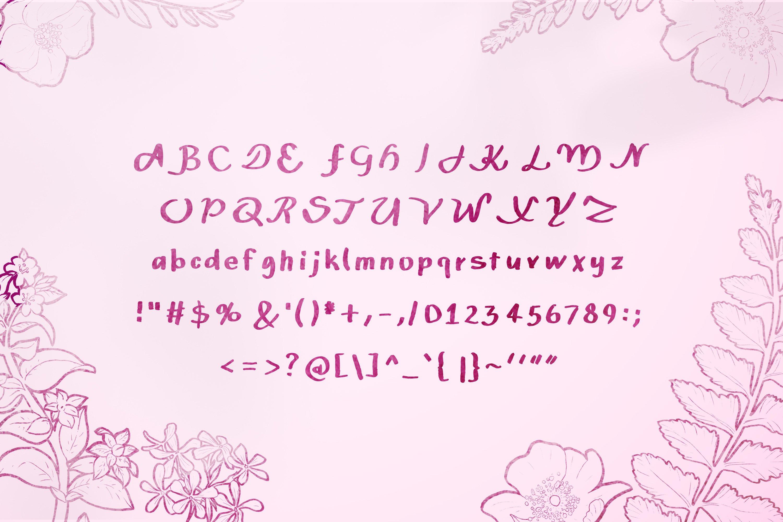 14 Fonts bundle vol.3 example image 24