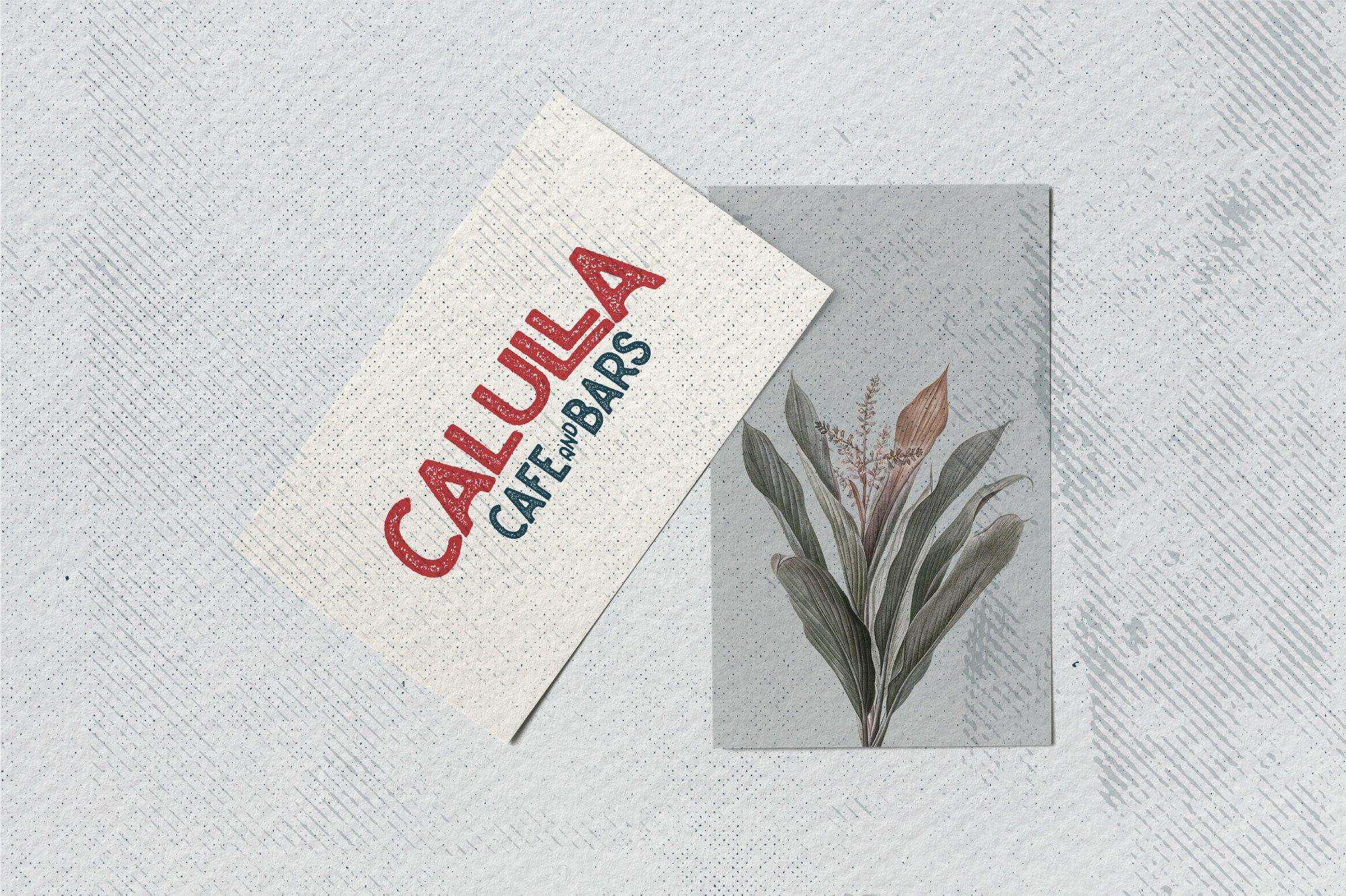 Caltons Typeface With Extra Bonus example image 7